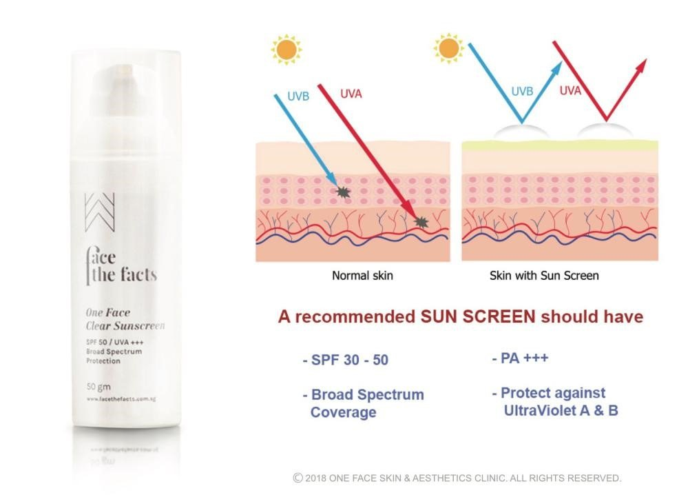 sun screen diagram